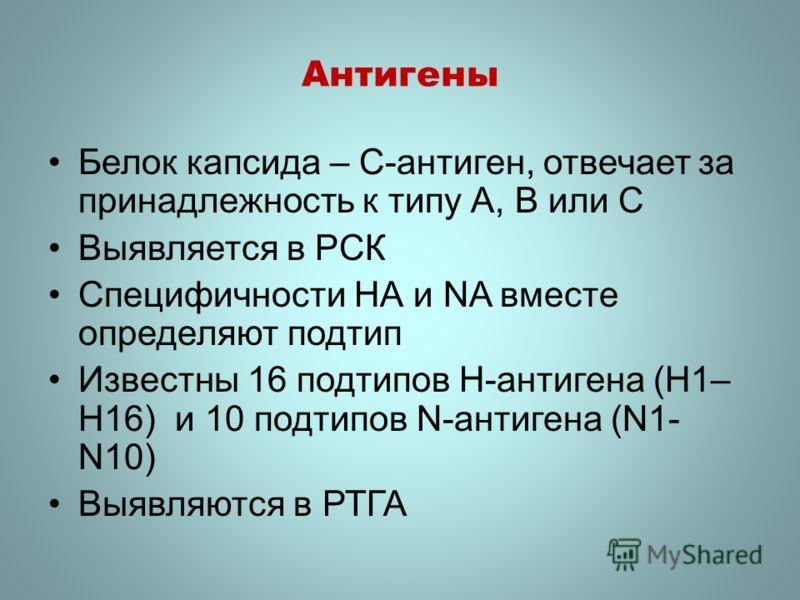 Антигены Белок капсида – С-антиген, отвечает за принадлежность к типу А, В или С Выявляется в РСК Специфичности НА и NA вместе определяют подтип Известны 16 подтипов H-антигена (H1– H16) и 10 подтипов N-антигена (N1- N10) Выявляются в РТГА