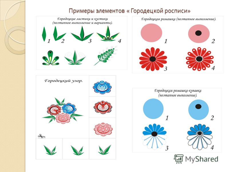 Фото цветов на фоне неба