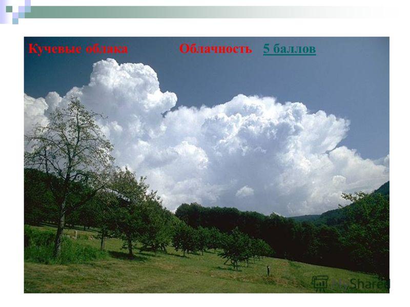 Кучевые облака Облачность 5 баллов5 баллов