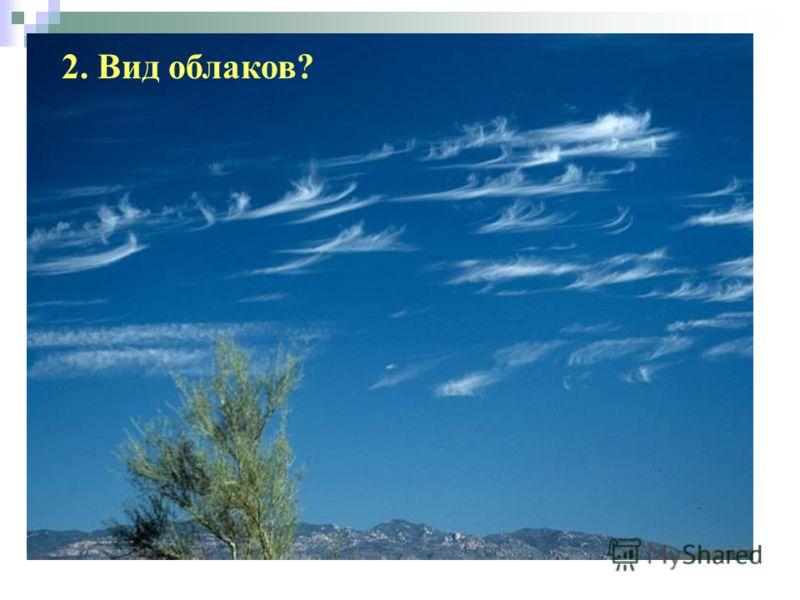 2. Вид облаков?