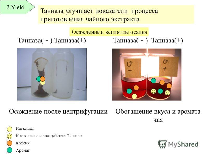 Танназа улучшает показатели процесса приготовления чайного экстракта 2.Yield Танназа( ) Танназа(+) Танназа( ) Танназа(+) Осаждение после центрифугацииОбогащение вкуса и аромата чая Осаждение и всплытие осадка Катехины Катехины после воздействия Танна