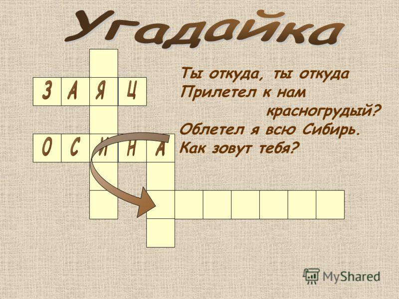 Ты откуда, ты откуда Прилетел к нам красногрудый? Облетел я всю Сибирь. Как зовут тебя?