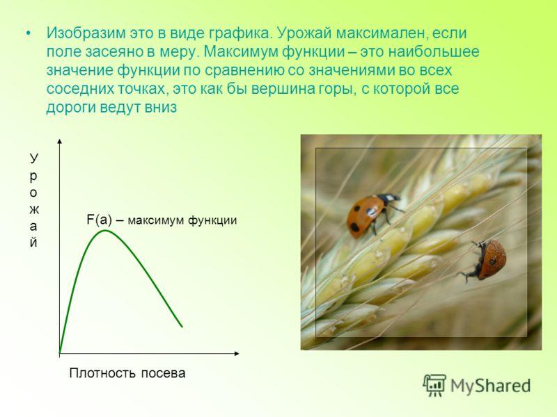 Изобразим это в виде графика. Урожай максимален, если поле засеяно в меру. Максимум функции – это наибольшее значение функции по сравнению со значениями во всех соседних точках, это как бы вершина горы, с которой все дороги ведут вниз F(a) – максимум