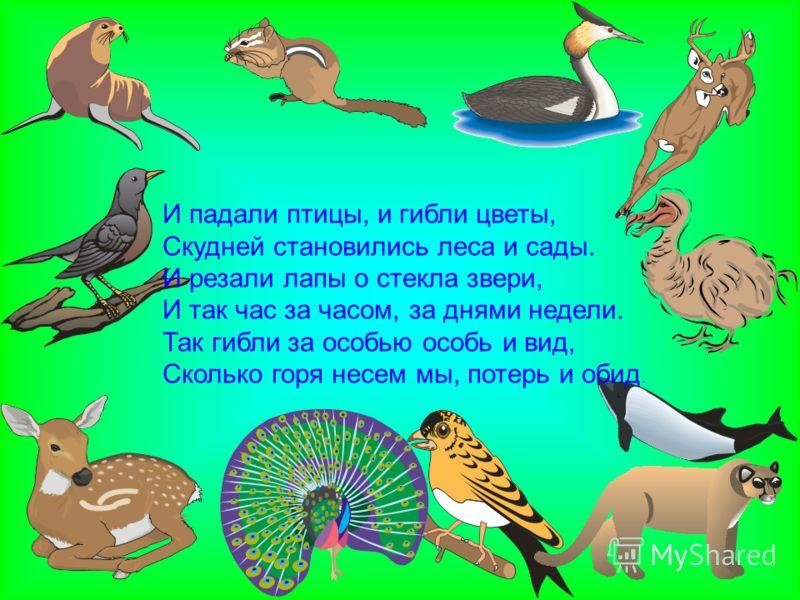 И падали птицы, и гибли цветы, Скудней становились леса и сады. И резали лапы о стекла звери, И так час за часом, за днями недели. Так гибли за особью особь и вид, Сколько горя несем мы, потерь и обид.