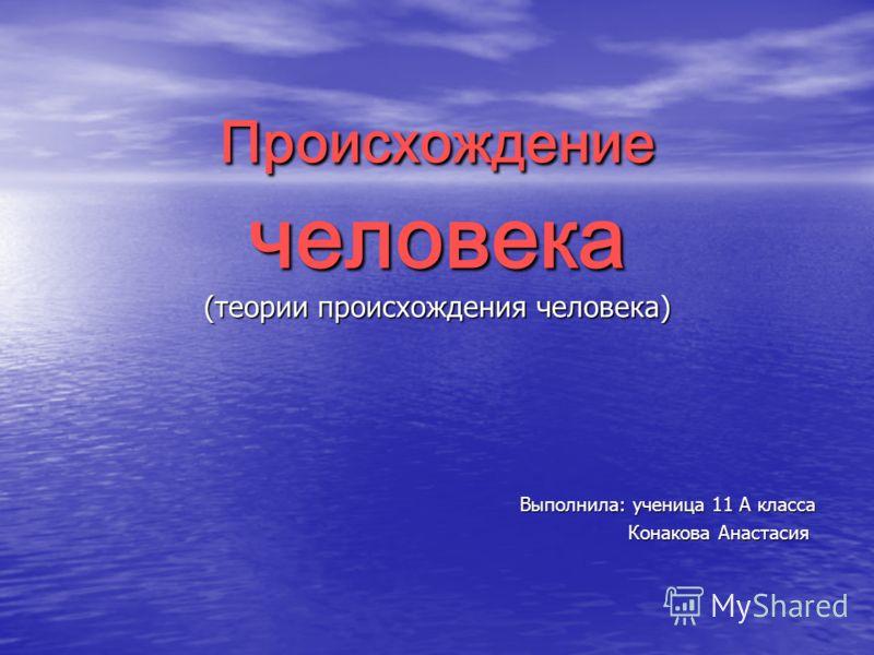 Происхождение человека (теории происхождения человека) Выполнила: ученица 11 А класса Конакова Анастасия Конакова Анастасия