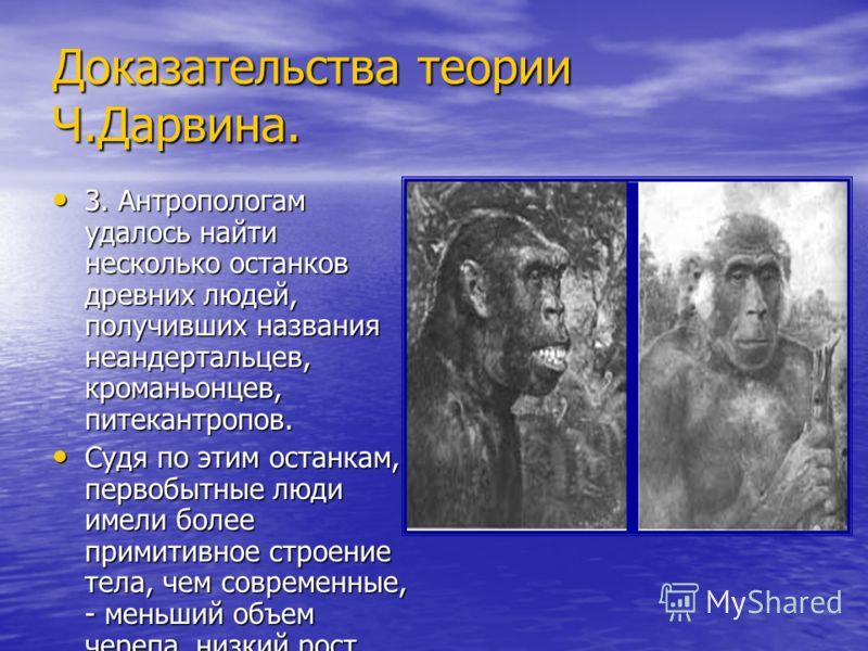 Доказательства теории Ч.Дарвина. 3. Антропологам удалось найти несколько останков древних людей, получивших названия неандертальцев, кроманьонцев, питекантропов. 3. Антропологам удалось найти несколько останков древних людей, получивших названия неан