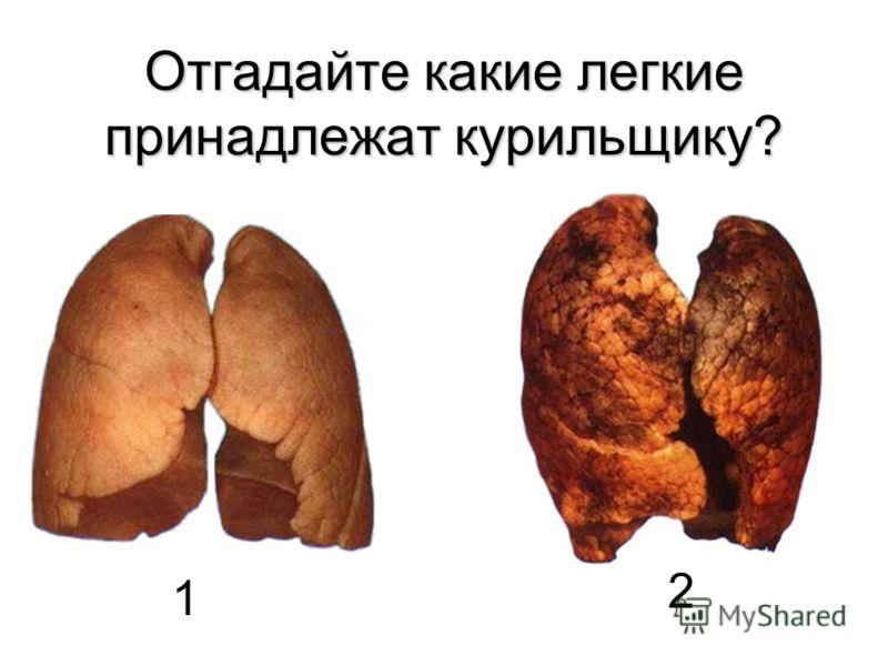 Отгадайте какие легкие принадлежат курильщику? 1 2