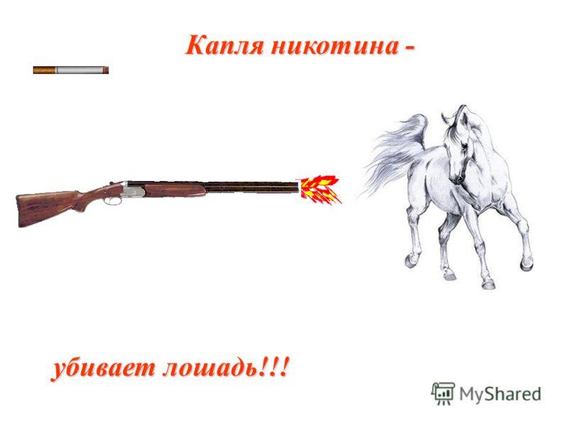 Капля никотина - убивает лошадь!!!