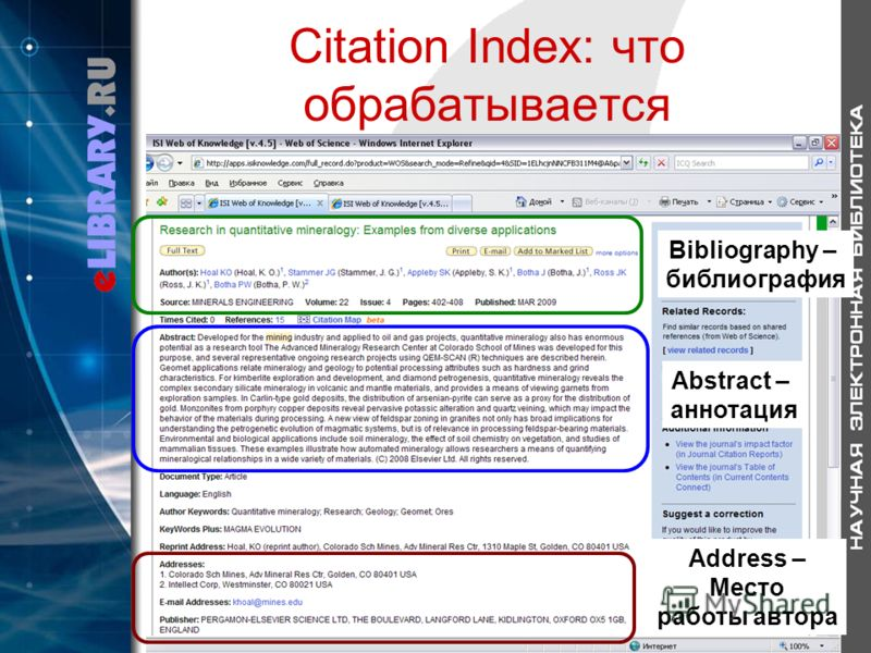 Citation Index: что обрабатывается Bibliography – библиография Abstract – аннотация Address – Место работы автора