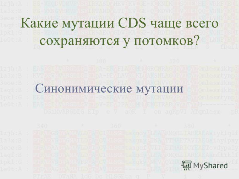 Какие мутации CDS чаще всего сохраняются у потомков? Синонимические мутации