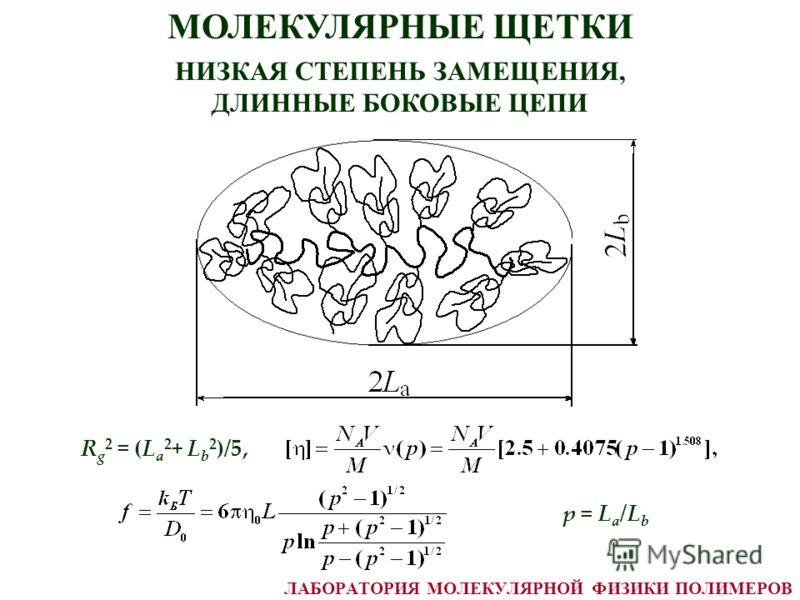 МОЛЕКУЛЯРНЫЕ ЩЕТКИ НИЗКАЯ СТЕПЕНЬ ЗАМЕЩЕНИЯ, ДЛИННЫЕ БОКОВЫЕ ЦЕПИ p = L a /L b R g 2 = (L a 2 + L b 2 )/5, ЛАБОРАТОРИЯ МОЛЕКУЛЯРНОЙ ФИЗИКИ ПОЛИМЕРОВ