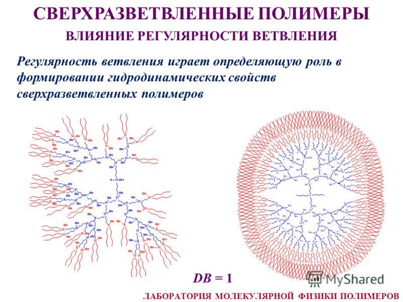 СВЕРХРАЗВЕТВЛЕННЫЕ ПОЛИМЕРЫ ВЛИЯНИЕ РЕГУЛЯРНОСТИ ВЕТВЛЕНИЯ Регулярность ветвления играет определяющую роль в формировании гидродинамических свойств сверхразветвленных полимеров DB = 1 ЛАБОРАТОРИЯ МОЛЕКУЛЯРНОЙ ФИЗИКИ ПОЛИМЕРОВ