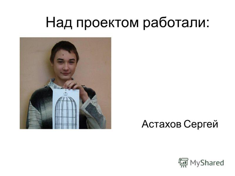 Над проектом работали: Астахов Сергей