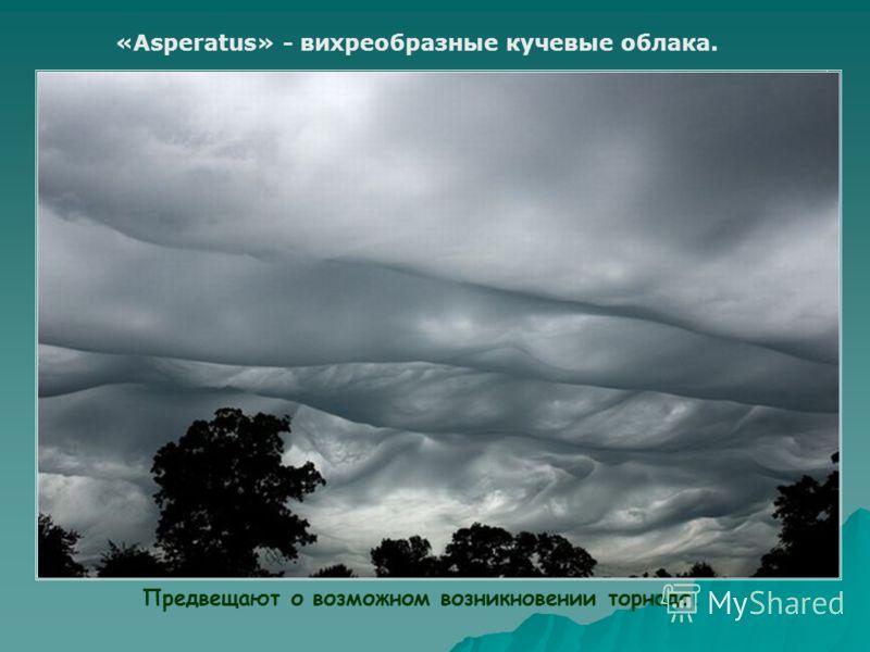 «Asperatus» - вихреобразные кучевые облака. Предвещают о возможном возникновении торнадо.