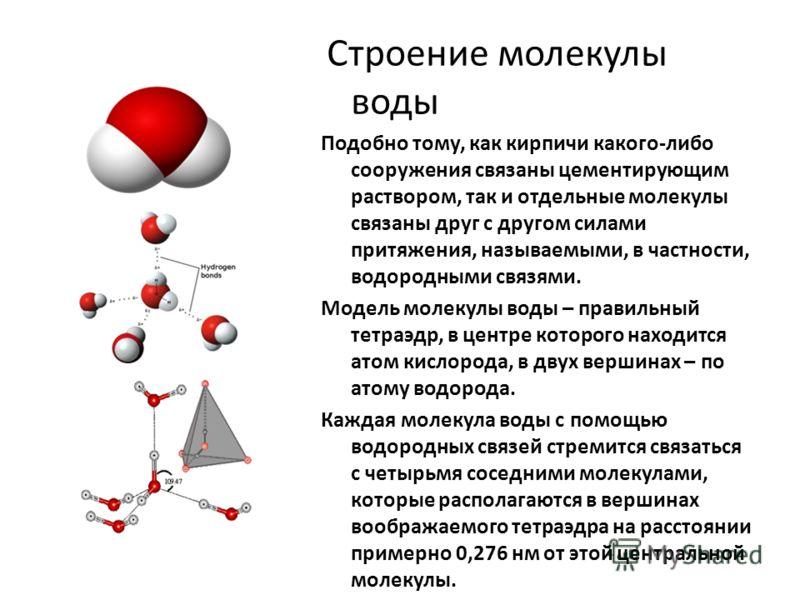 Строение молекулы воды Подобно тому, как кирпичи какого-либо сооружения связаны цементирующим раствором, так и отдельные молекулы связаны друг с другом силами притяжения, называемыми, в частности, водородными связями. Модель молекулы воды – правильны