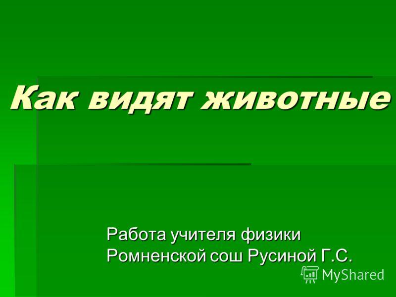 Как видят животные Работа учителя физики Ромненской сош Русиной Г.С.
