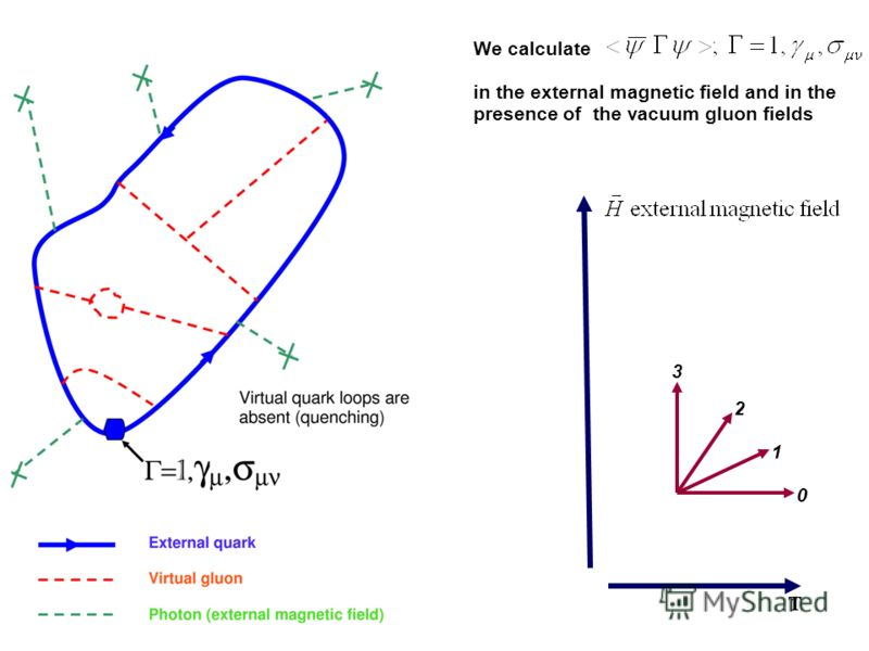 1 0 2 3 T We calculate in the external magnetic field and in the presence of the vacuum gluon fields