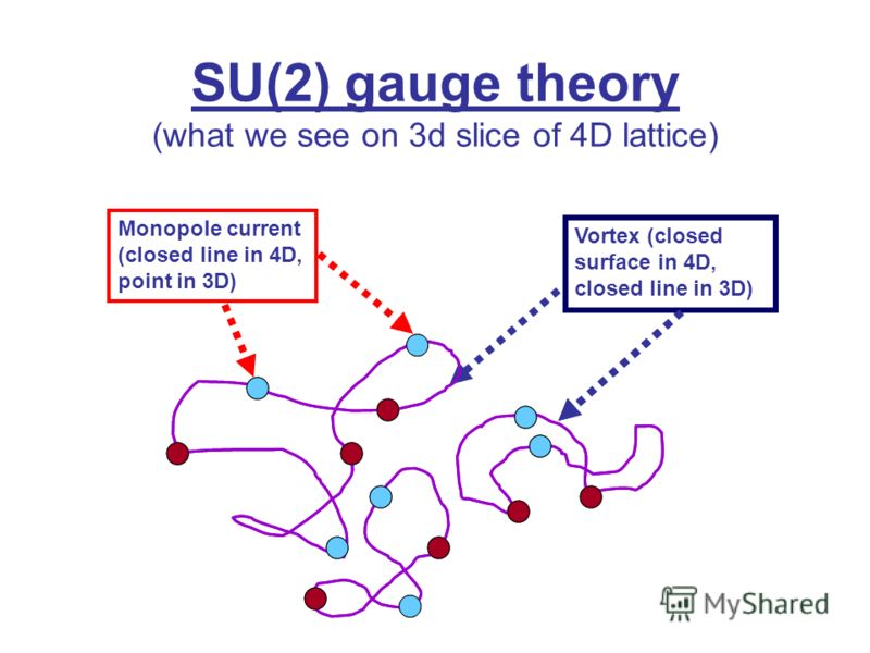Monopole current (closed line in 4D, point in 3D) Vortex (closed surface in 4D, closed line in 3D) SU(2) gauge theory (what we see on 3d slice of 4D lattice)
