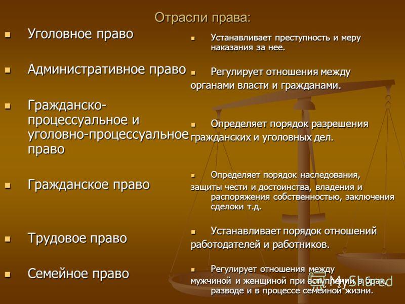 4. Основные структурные элементы системы права. Норма права Отрасль права Институт права