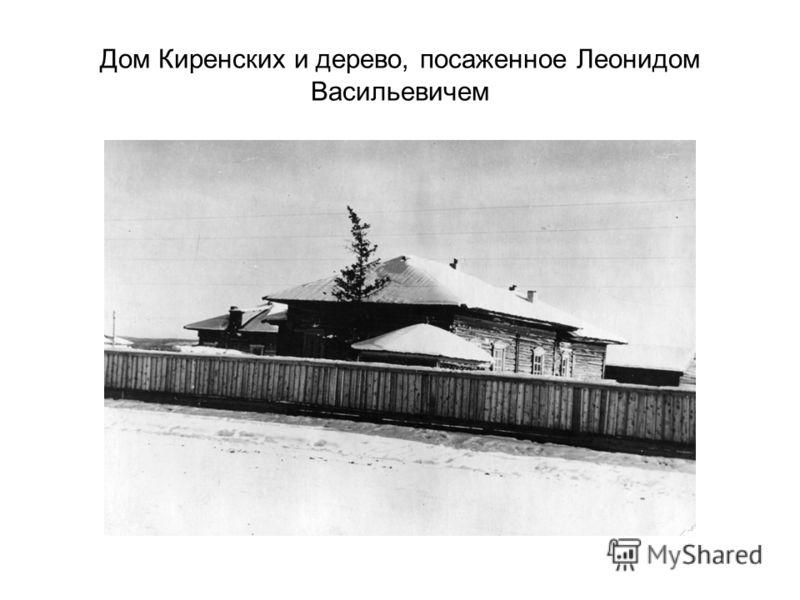 Дом Киренских и дерево, посаженное Леонидом Васильевичем