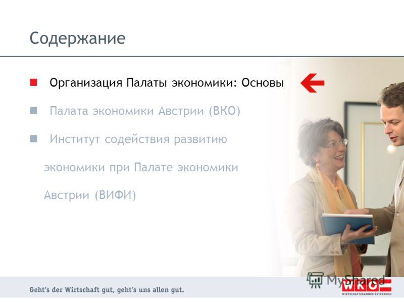 Содержание Организация Палаты экономики: Основы Палата экономики Австрии (ВКО) Институт содействия развитию экономики при Палате экономики Австрии (ВИФИ)