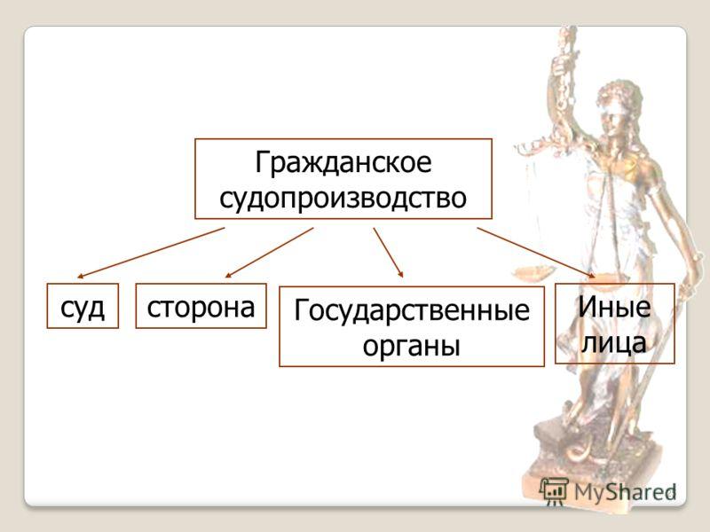 25 Гражданское судопроизводство судсторона Государственные органы Иные лица