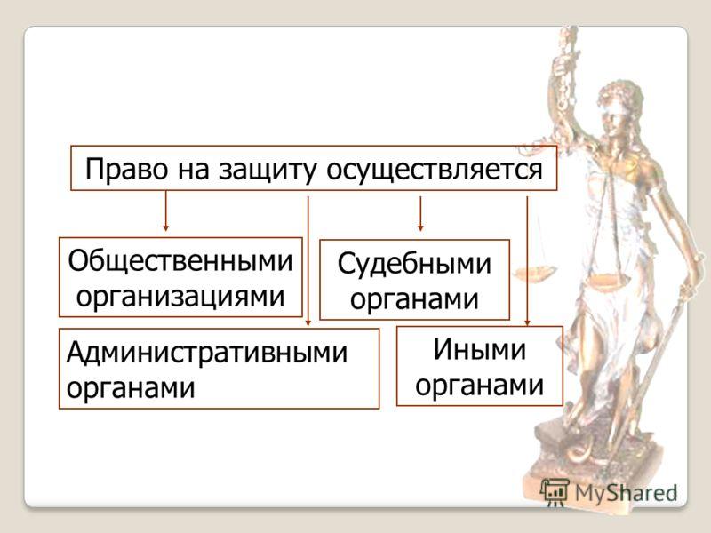 8 Право на защиту осуществляется Общественными организациями Административными органами Судебными органами Иными органами