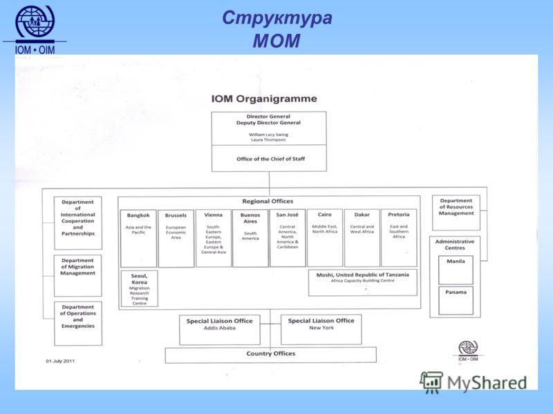 Структура МОМ