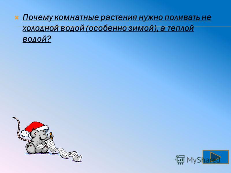 Волк не стережет добычу в засаде, как кошки, а догоняет ее бегом.
