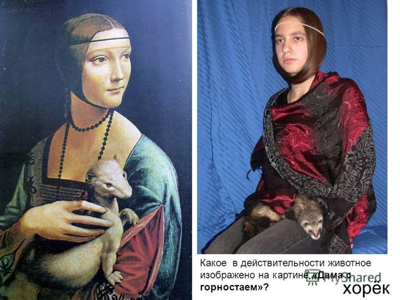 Какое в действительности животное изображено на картине «Дама с горностаем»? хорёк
