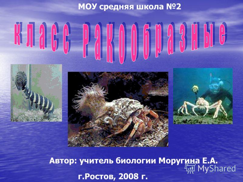 МОУ средняя школа 2 Автор: учитель биологии Моругина Е.А. г.Ростов, 2008 г.