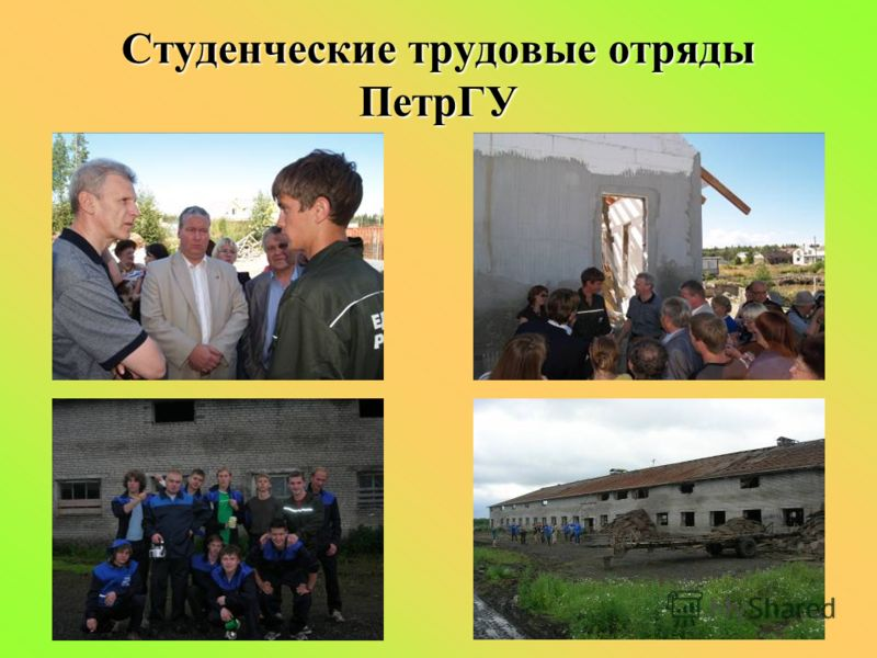 Студенческие трудовые отряды ПетрГУ