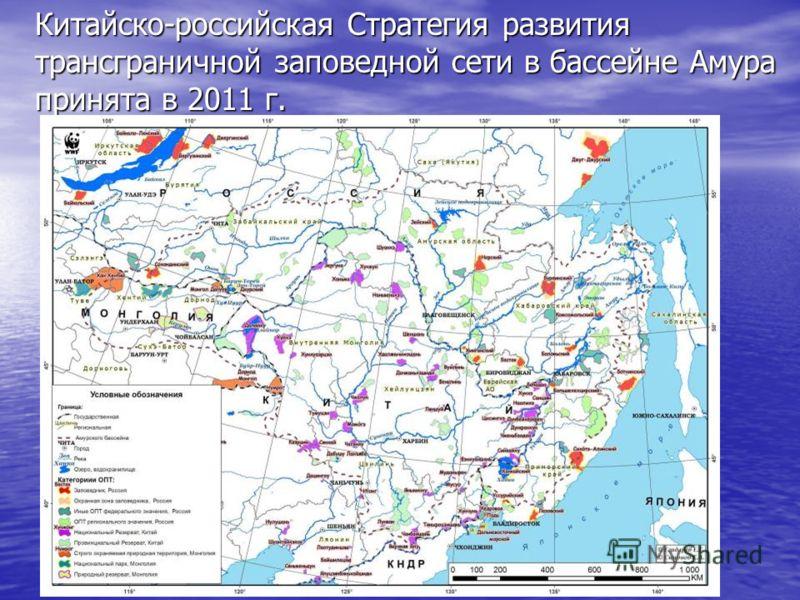 Китайско-российская Стратегия развития трансграничной заповедной сети в бассейне Амура принята в 2011 г.