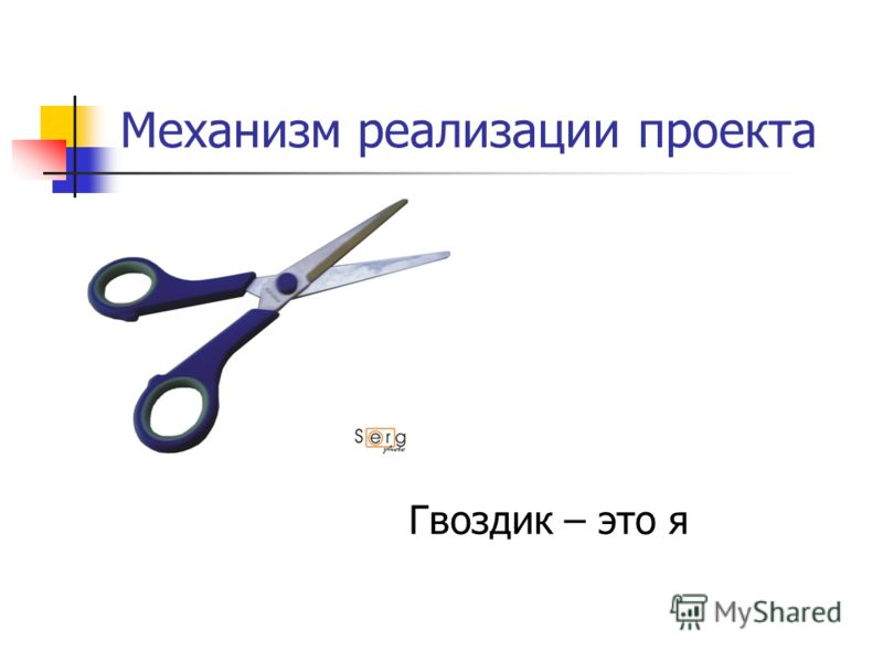 Механизм реализации проекта Гвоздик – это я