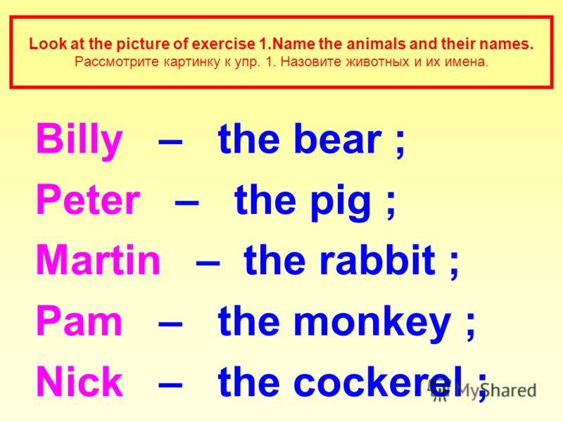 Look at the picture of exercise 1.Name the animals and their names. Рассмотрите картинку к упр. 1. Назовите животных и их имена. Billy – the bear ; Peter – the pig ; Martin – the rabbit ; Pam – the monkey ; Nick – the cockerel ;