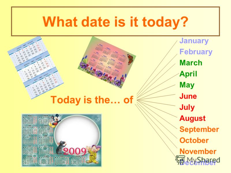 What date is it today? Today is the… of January February March April May June July August September October November December