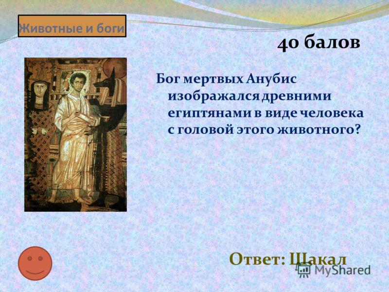 Животные и боги 40 балов Бог мертвых Анубис изображался древними египтянами в виде человека с головой этого животного? Ответ: Шакал