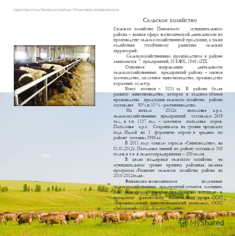 Характеристика Пеновского района / Отраслевая направленность Сельское хозяйство 12 Сельское хозяйство Пеновского муниципального района – важная сфера экономической деятельности по производству сельско-хозяйственной продукции, а также содействия устой