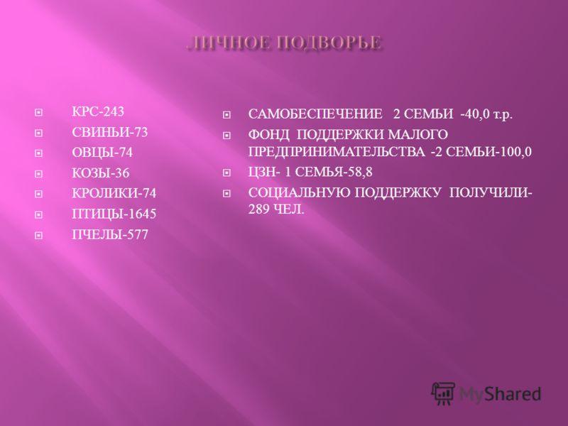 КРС-243 СВИНЬИ-73 ОВЦЫ-74 КОЗЫ-36 КРОЛИКИ-74 ПТИЦЫ-1645 ПЧЕЛЫ-577 САМОБЕСПЕЧЕНИЕ 2 СЕМЬИ -40,0 т. р. ФОНД ПОДДЕРЖКИ МАЛОГО ПРЕДПРИНИМАТЕЛЬСТВА -2 СЕМЬИ -100,0 ЦЗН - 1 СЕМЬЯ -58,8 СОЦИАЛЬНУЮ ПОДДЕРЖКУ ПОЛУЧИЛИ - 289 ЧЕЛ.