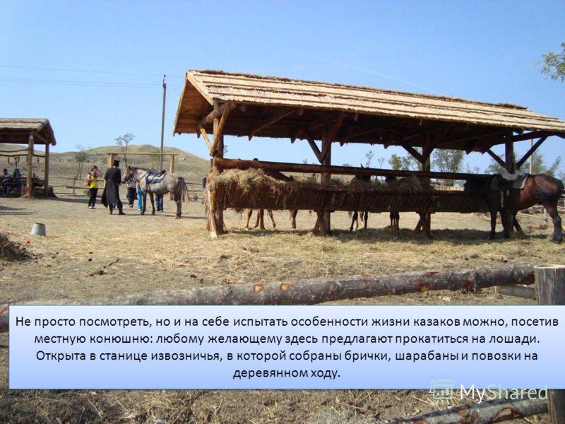 Не просто посмотреть, но и на себе испытать особенности жизни казаков можно, посетив местную конюшню: любому желающему здесь предлагают прокатиться на лошади. Открыта в станице извозничья, в которой собраны брички, шарабаны и повозки на деревянном хо