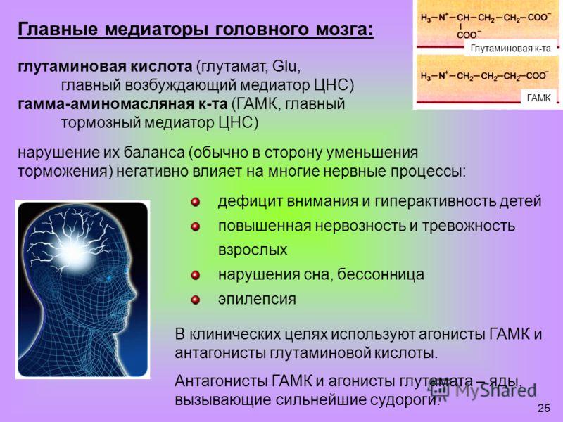 25 Главные медиаторы головного мозга: глутаминовая кислота (глутамат, Glu, главный возбуждающий медиатор ЦНС) гамма-аминомасляная к-та (ГАМК, главный тормозный медиатор ЦНС) нарушение их баланса (обычно в сторону уменьшения торможения) негативно влия