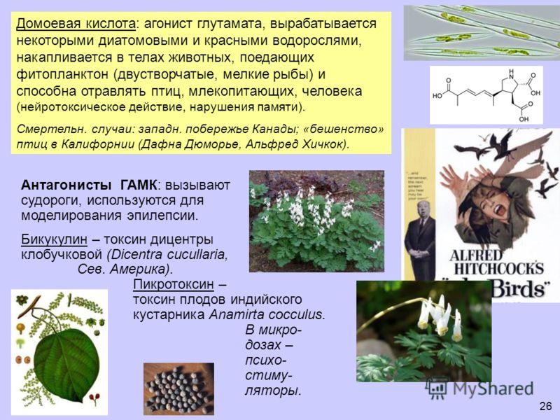 Домоевая кислота: агонист глутамата, вырабатывается некоторыми диатомовыми и красными водорослями, накапливается в телах животных, поедающих фитопланктон (двустворчатые, мелкие рыбы) и способна отравлять птиц, млекопитающих, человека (нейротоксическо
