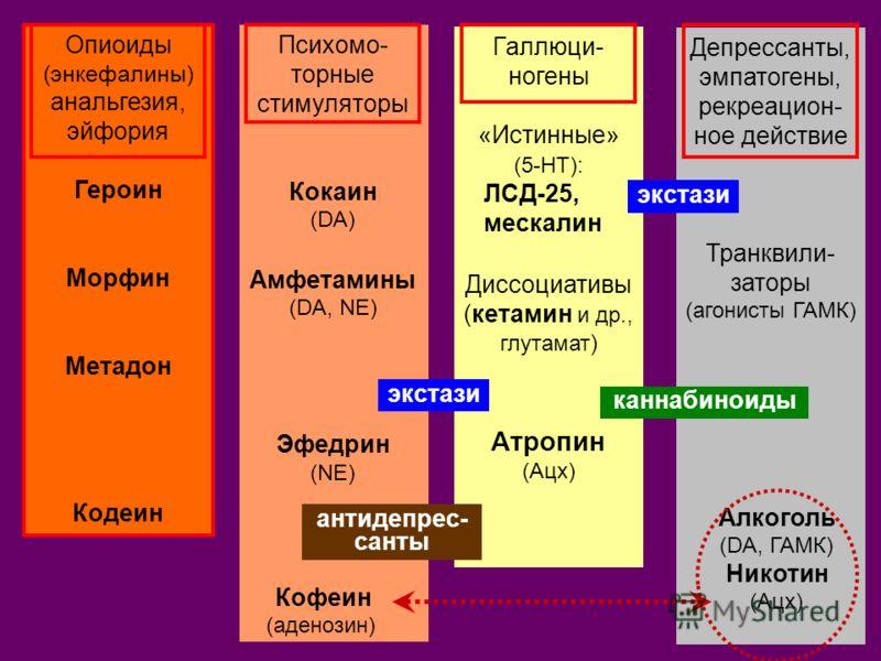 Депрессанты, эмпатогены, рекреацион- ное действие Транквили- заторы (агонисты ГАМК) Алкоголь (DA, ГАМК) Никотин (Ацх) Галлюци- ногены «Истинные» (5-НТ): ЛСД-25, мескалин Диссоциативы (кетамин и др., глутамат ) Атропин (Ацх) Психомо- торные стимулятор