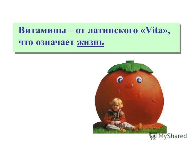 здоровое питание иркутск