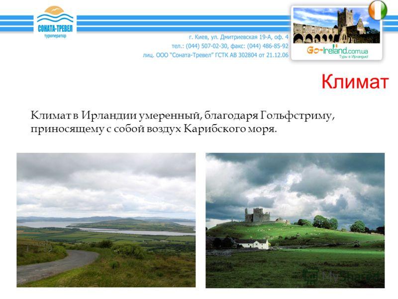 Климат Климат в Ирландии умеренный, благодаря Гольфстриму, приносящему с собой воздух Карибского моря.