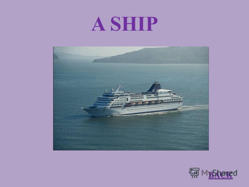 A SHIP BACK