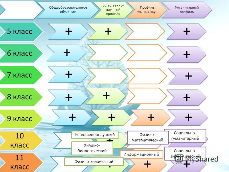 Общеобразовательное обучение Естественно- научный профиль Профиль точных наук Гуманитарный профиль 5 класс +++ 6 класс + + 7 класс + + 8 класс + + + 9 класс ++++ 10 класс ++ + 11 класс +++ Социально- гуманитарный Социально- экономический Физико- мате