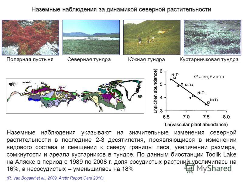 Северная тундраЮжная тундра Полярная пустыня Кустарничковая тундра Наземные наблюдения указывают на значительные изменения северной растительности в последние 2-3 десятилетия, проявляющиеся в изменении видового состава и смещении к северу границы лес