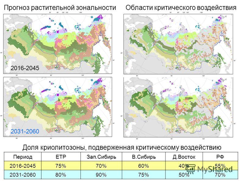 Прогноз растительной зональности 2016-2045 2031-2060 Области критического воздействияПериодЕТРЗап.СибирьВ.СибирьД.ВостокРФ2016-204575%70%60%40%55% 2031-206080%90%75%50%70% Доля криолитозоны, подверженная критическому воздействию