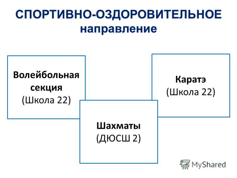 Волейбольная секция (Школа 22) Каратэ (Школа 22) Шахматы (ДЮСШ 2)